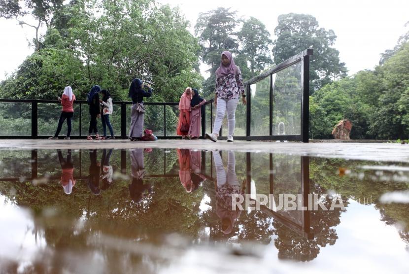 (Ilustrasi) Warga berswafoto saat berwisata di Kebun Raya Bogor, Jawa Barat.