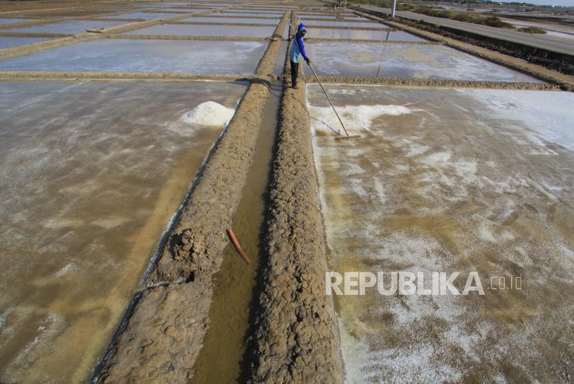 Petambak garam di Losarang, Indramayu, Jawa Barat (ilustrasi). Masih seringnya hujan turun membuat panen garam di Jawa Barat diprediksi mundur dari biasanya Juni-Juli menjadi Agustus-September.