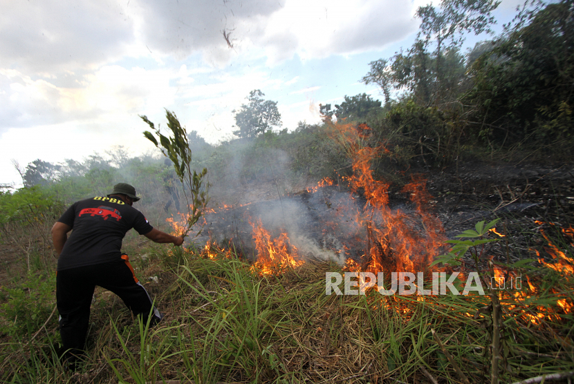 Petugas Badan Penanggulangan Bencana Daerah (BPBD) Kalimantan Selatan berupaya memadamkan api yang membakar semak belukar di Banjarbaru, Kalimantan Selatan (ilustrasi)