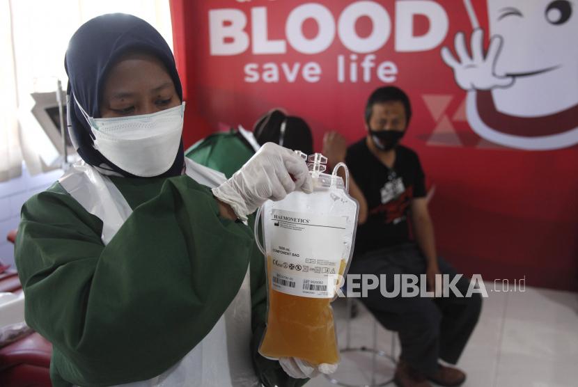 Petugas Palang Merah Indonesia (PMI) menunjukkan plasma konvalesen dari pendonor penyintas COVID-19 di PMI Solo, Jawa Tengah, Ahad (25/7/2021). PMI Solo terus menambah mesin apheresis untuk pengambilan plasma konvalesen penyintas COVID-19 guna meningkatkan persediaan plasma konvalesen untuk terapi penyembuhan pasien COVID-19 yang sedang dalam perawatan.