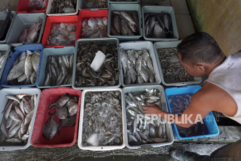 Seorang nelayan memilah hasil tangkapan hasil melaut di TPI Pelabuhan Perikanan Cilacap, Jateng. ilustrasi