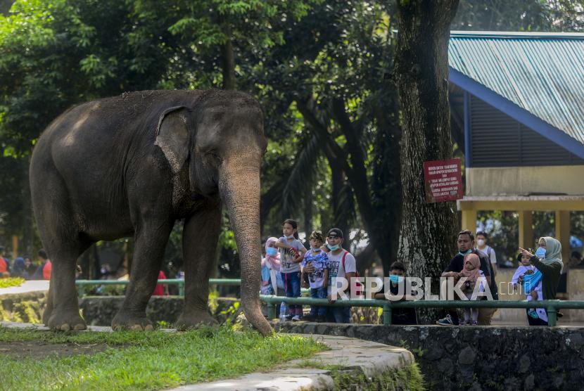 Taman Margasatwa Ragunan (ilustrasi)