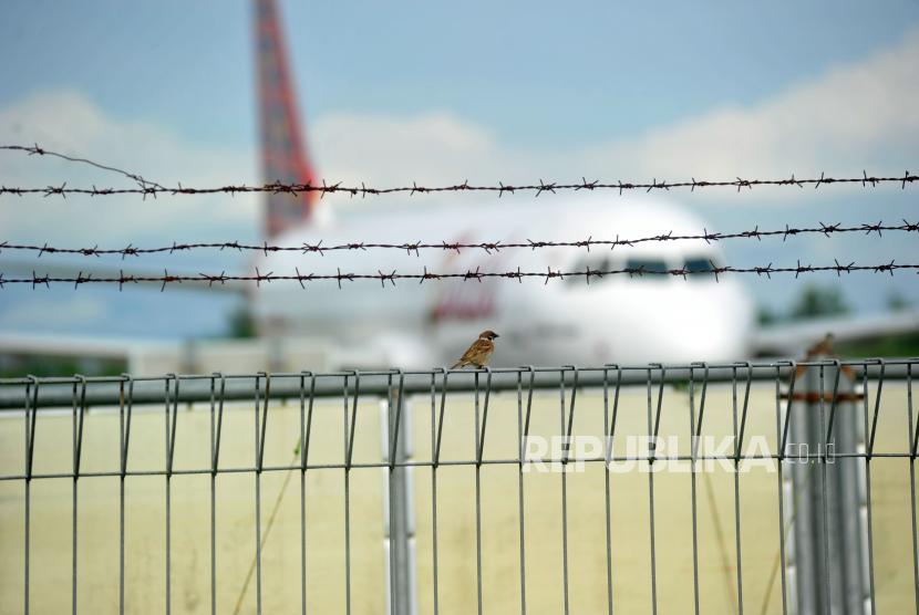Kemenhub akan Buat Aturan Pengendalian Transportasi Lebaran. Foto:   Seekor burung pipit dengan latar pesawat udara komersil di Bandara Internasional Minangkabau (BIM), Padangpariaman, Sumatera Barat.