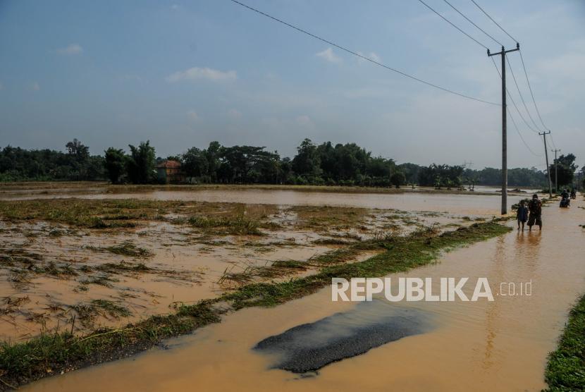 Warga melihat kondisi areal persawahan yang terendam banjir di Desa Gubukan Cibereum, Lebak, Banten, Kamis (14/5/2020). Menurut warga setempat  akibat luapan air sungai Cibereum yang terjadi sejak Rabu (13/5) malam,  menyebabkan areal persawahan terendam banjir hingga tidak bisa dipanen