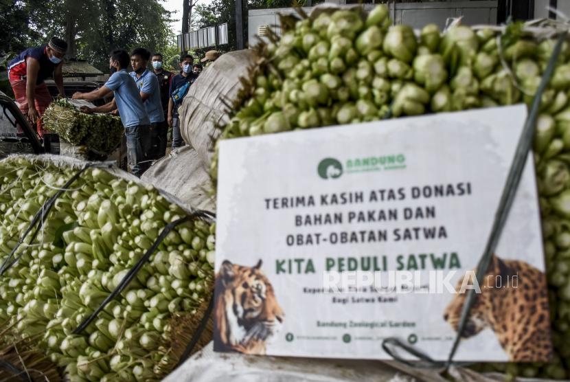 Petugas melakukan bongkar muat sayur sawi donasi untuk pakan satwa di Bandung Zoological Garden, Kota Bandung, Kamis (5/8). Explore Store Project mendonasikan sebanyak tujuh ton sayur sawi untuk pakan satwa di Bandung Zoological Garden (Bazooga) guna membantu memenuhi kebutuhan pakan dan nutrisi satwa selama penutupan sementara Bazooga di masa Pemberlakuan Pembatasan Kegiatan Masyarakat (PPKM) Level 4.