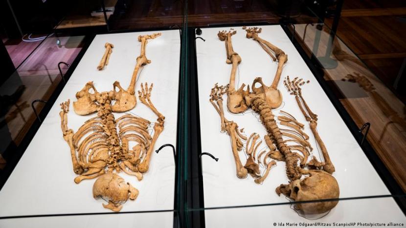 Tes DNA Ungkap Hubungan Keluarga Dua Kerangka Viking di Denmark dan Inggris