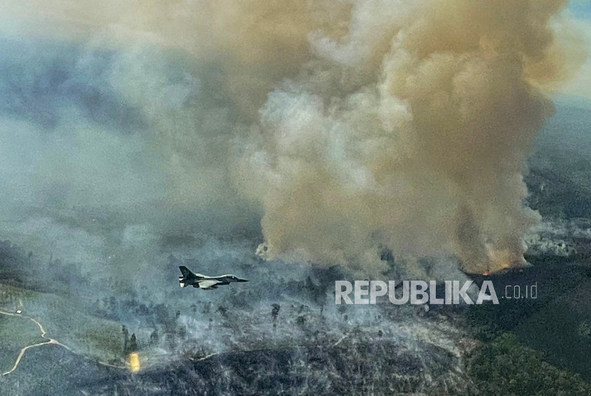 Kebakaran hutan dan lahan terjadi di empat kabupaten dan kota di Provinsi Riau.