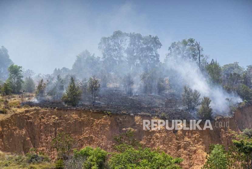 Asap mengepul akibat kebakaran hutan di wilayah Nongsa, Batam, Kepulauan Riau