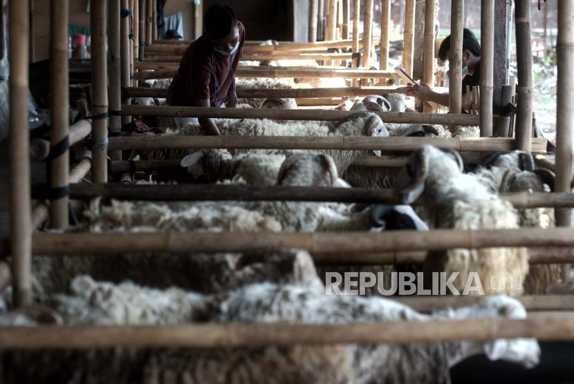 Bupati Cianjur Imbau Pedagang Tawarkan Qurban via Daring (ilustrasi)>