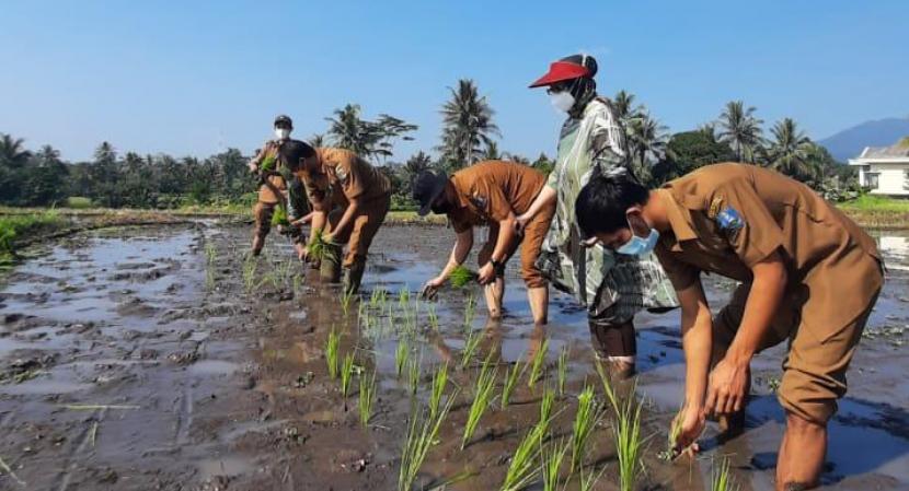 Ketahanan Pangan Banten