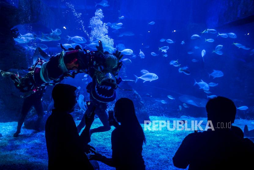 Liong beraksi menghibur pengunjung saat pertunjukan Liong Show Underwater di Jakarta Aquarium Safari, Jakarta.