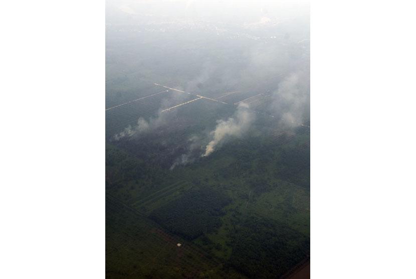 Asap yang disebabkan titik api terlihat di sebuah lahan kawasan Riau, Rabu (17/9).  (Antara/Wahyu Putro)