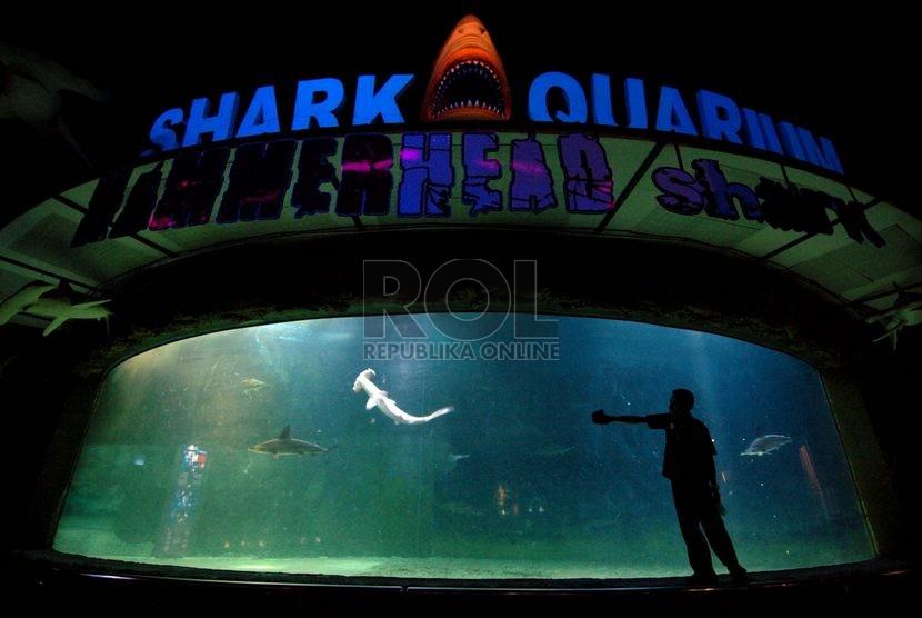 Tips Hemat Berwisata Ke Sea World Indonesia Republika Online