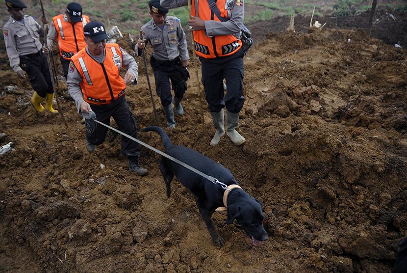 Polisi menggunakan anjing pelacak untuk mencari korban longsor di Kampung Cibitung, Desa Margamukti, Pangalengan, Kabupaten Bandung, Jawa Barat, Jumat (8/5). (Antara/Novrian Arbi)