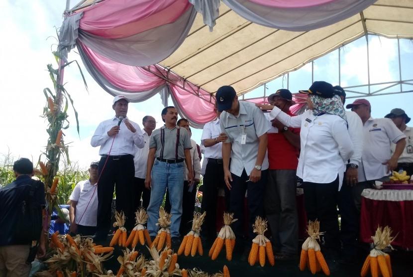 Penandatanganan kesepakatan kerjasama antar petani Lamongan dan  peternak Blitar terkait serapan jagung di Lamongan, Jawa Timur, Rabu (6/2).