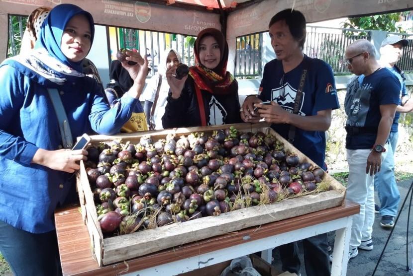 Bupati Purwakarta Anne Ratna Mustika, saat mengunjungi stand dalam Festival Manggis Purwakarta 2019, Sabtu (23/4).