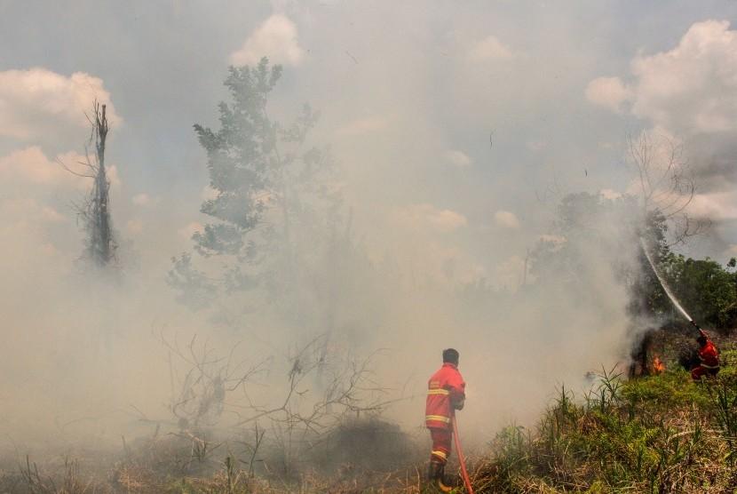 Petugas Pemadam Kebakaran Kota Pekanbaru berusaha memadamkan api yang membakar semak belukar dan pepohonan ketika terjadi kebakaran lahan gambut di Pekanbaru, Riau, Senin (25/3/2019).