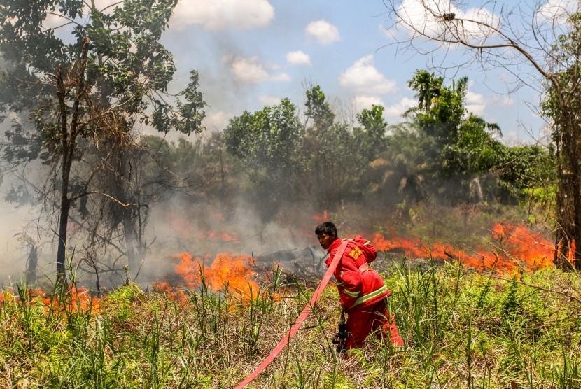 Petugas berusaha memadamkan api yang menyebabkan ebakaran lahan  (ilustrasi)