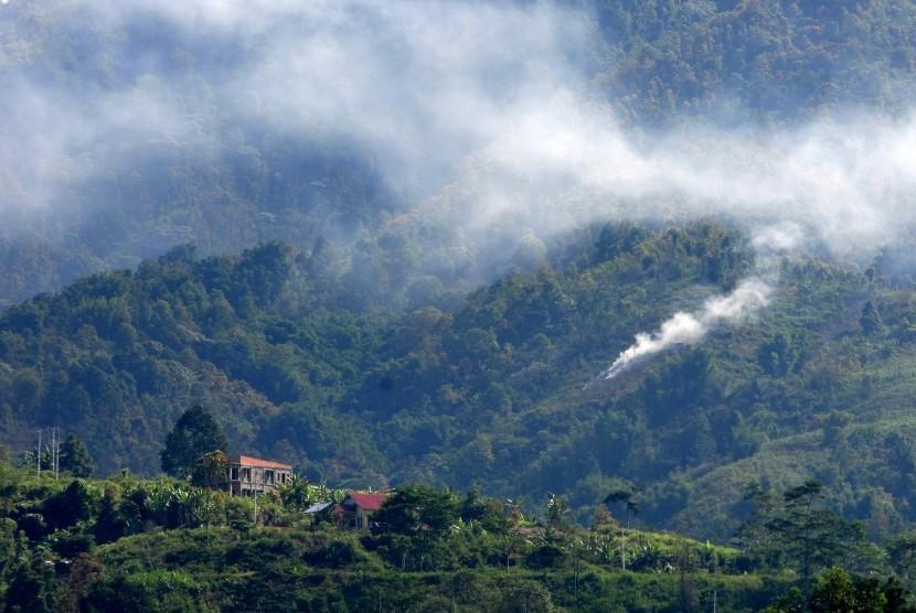 Hutan Way Kambas Dan Bukit Barisan Selatan Terbakar Republika Online