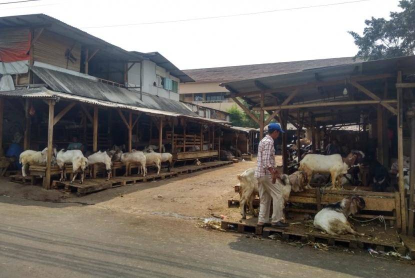 Pedagang hewan kurban di Jalan KH Mas Mansyur, Tanah Abang, Jakarta Pusat, Rabu (17/7).