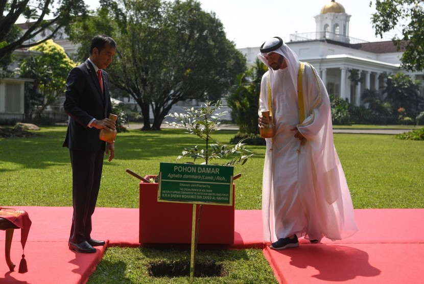 President Joko Widodo (left) with Crown Prince Abu Dhabi / Deputy Supreme Commander of the United Arab Emirates Armed Forces Sheikh Mohamed Bin Zayed Al Nahyan (right) watering Damar trees planted while receiving a state visit at Bogor Palace, West Java, Wednesday (24/7/2019).