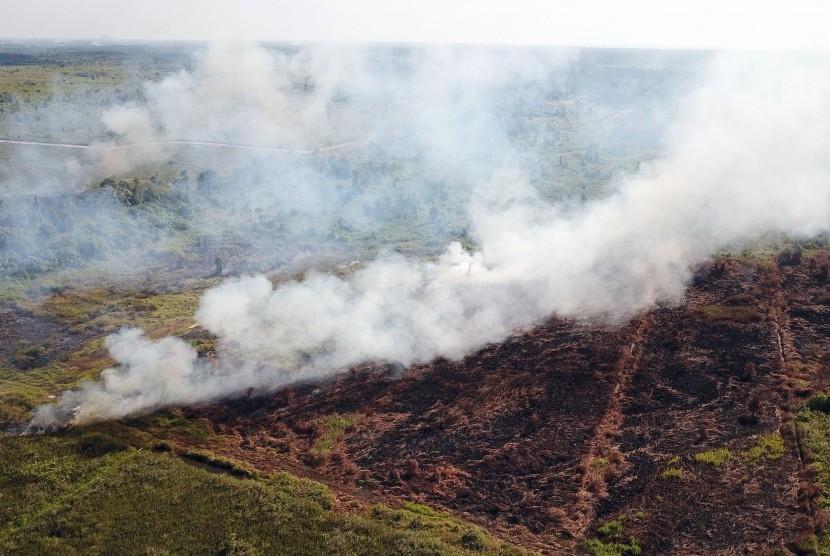 Foto udara kebakaran hutan dan lahan di Kalimantan Barat.