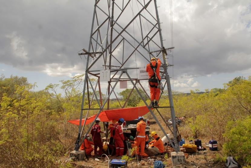 Sejumlah pekerja PT PLN (Persero) melakukan perawatan jaringan listrik di Kota Kupang, NTT, Kamis (8/8/2019).