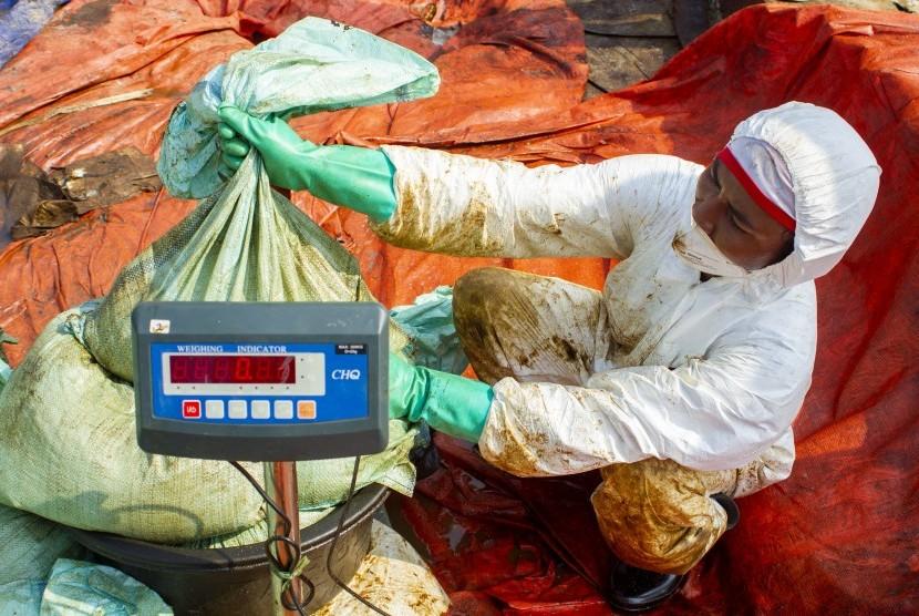 Petugas menimbang berat karung berisi tumpahan minyak mentah yang tercecer di Laut Jawa, Pasirputih, Cilamaya Kulon, Karawang, Jawa Barat, Senin (12/8/2019).