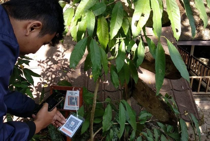 Pengunjung mencoba melakukan scan terhadap tanaman yang ada  di tempat wisata Gunung Api Purba (GAP), Nglanggeran, Gunungkidul, DIY.