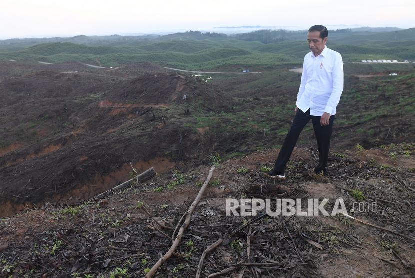 Presiden Joko Widodo meninjau lokasi rencana ibu kota baru di Sepaku, Penajam Paser Utara, Kalimantan Timur, Selasa (17/12/2019).
