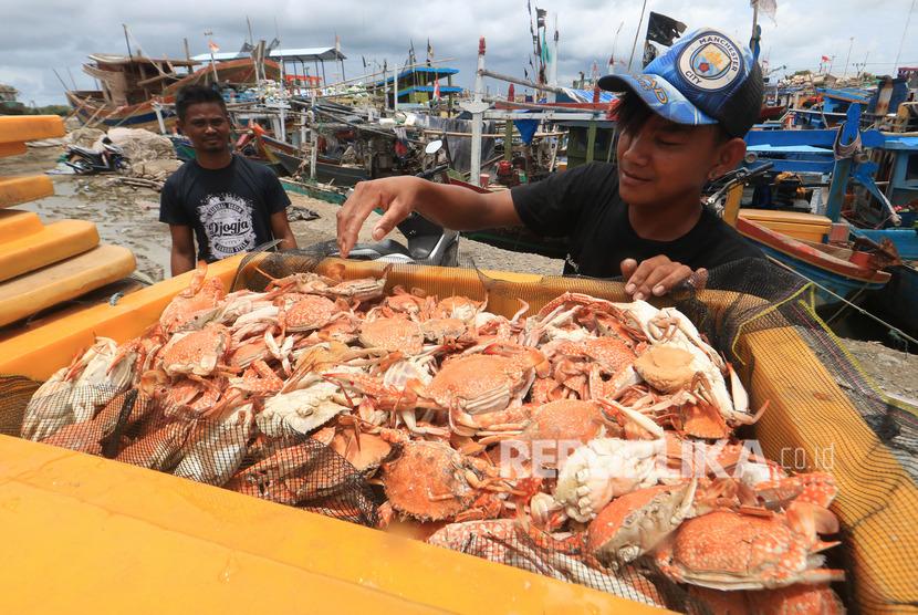 Nelayan mengumpulkan hasil tangkapan rajungan (ilustrasi).