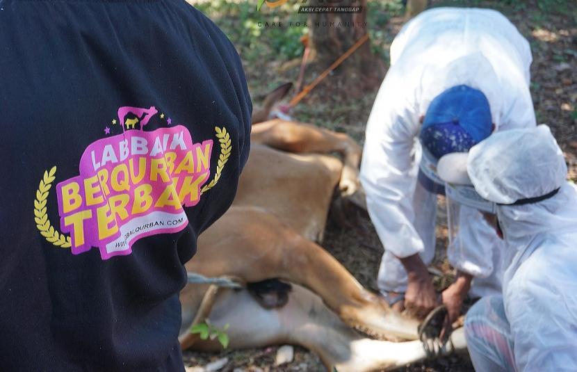 Relawanmengenakan APD lengkap saat melakukan pemotongan hewan kurban