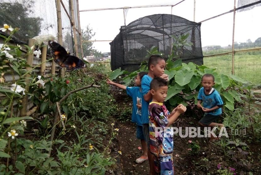 Anak-anak mengunjungi Taman Kupu-kupu di RT 11 RW 6 Kelurahan Cipayung,  Jakarta Timur, Senin (7/1).