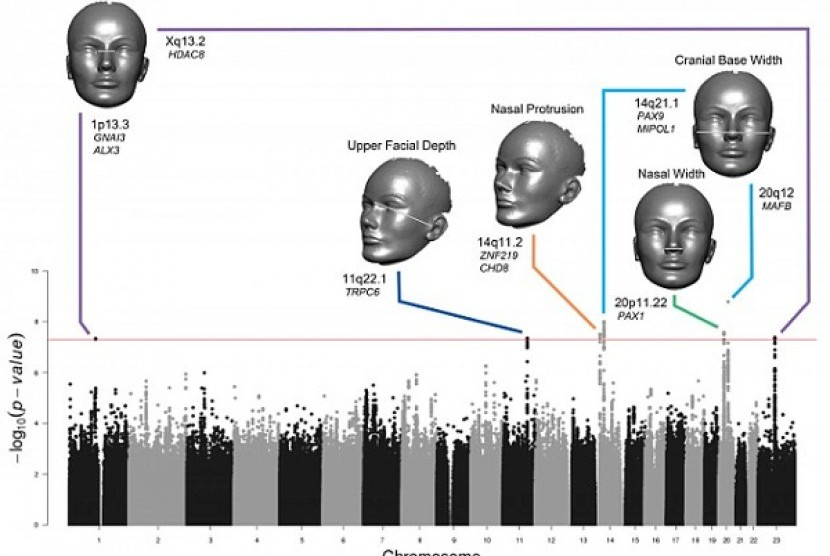 Analisis wajah. Ilustrasi