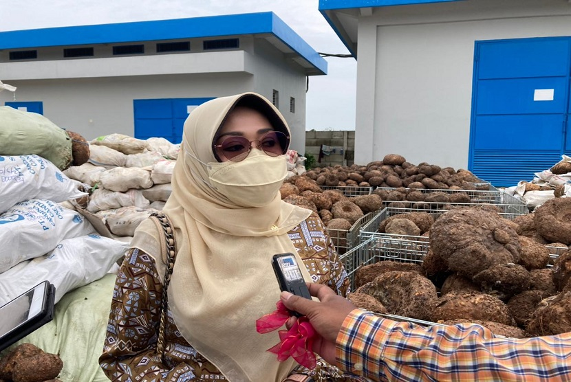 Anggota Komisi IV DPR RI, Ema Umiyyatul Chusnah mendorong budidaya tanaman porang di Provinsi Jawa Timur semakin menggeliat.