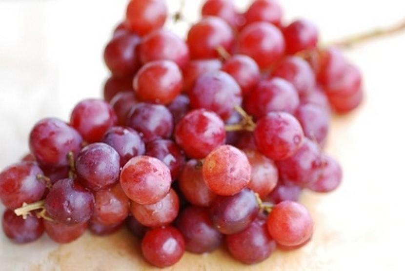 78 Gambar Anggur Untuk Diwarnai Paling Bagus