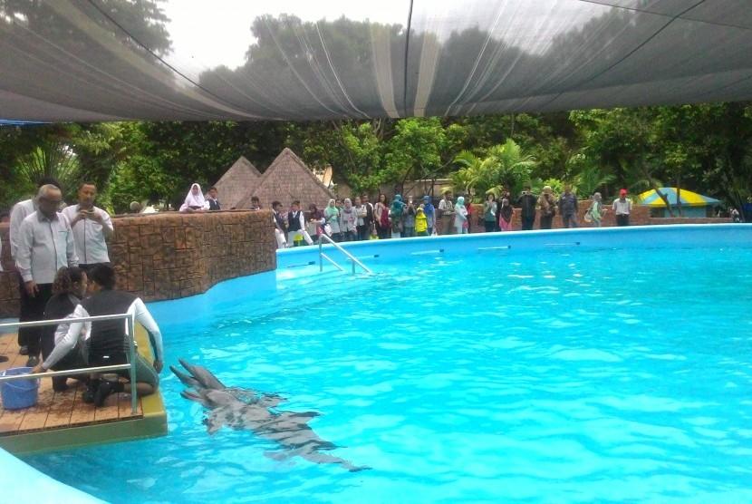 Area Dolphin Bay di Ancol.