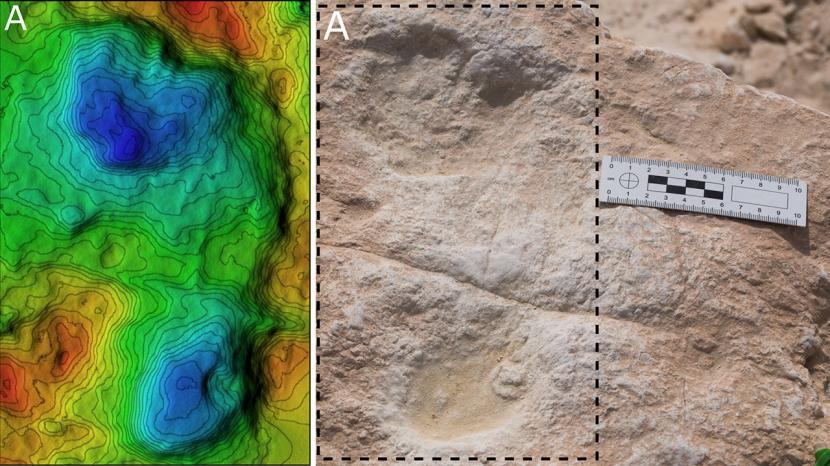 Arekolog belum lama ini menemukan jejak kaki manusia di tepi danau kuno yang sekarang menjadi Gurun Nefud, Arab Saudi.