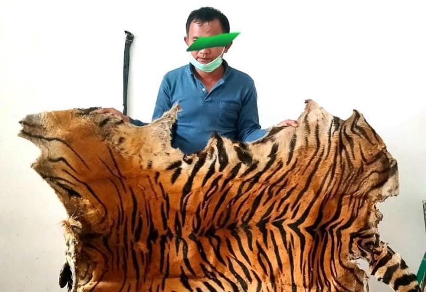 Kulit Harimau Sumatra
