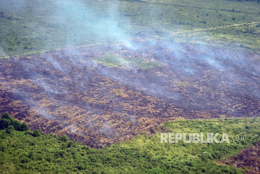 Asap mengepul di atas lahan yang terbakar di Desa Lagan Ulu, Geragai, Tanjungjabung Timur, Jambi, Jumat (4/8).