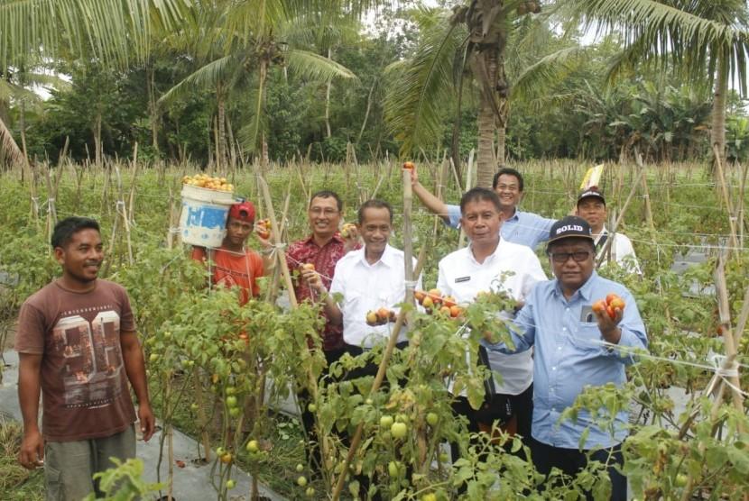 Badan Ketahanan Pangan (BKP) Kementerian Pertanian melaksanakan kegiatan SOLID atau Smallholder livelihood Development Program di Maluku dan Maluku Utara