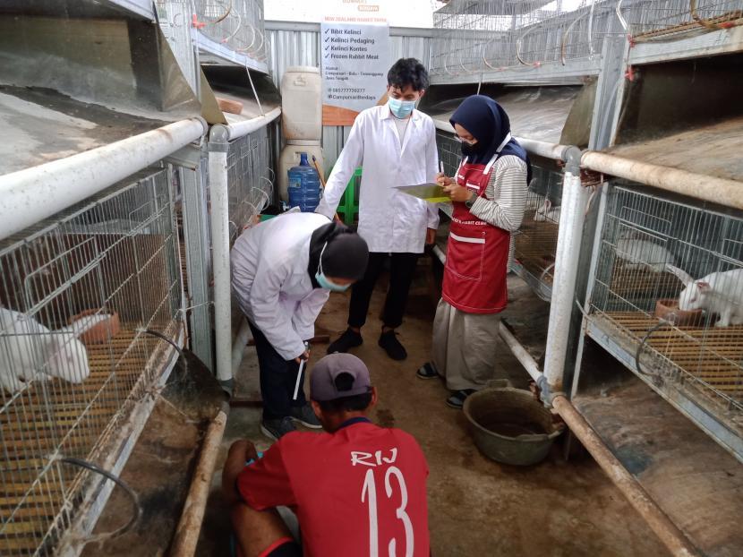Badan Usaha Milik Masyarakat (BUMMas) Campursari Berdaya mendapatkan kunjungan dari mahasiswa Universitas Diponegoro (UNDIP), Sabtu (18/9). Sebanyak 3 mahasiswa yang didampingi Muhammad Gelar mengunjungi BUMMas Campursari Berdaya dalam rangka melakukan penelitian kelinci jenis New Zealand White (NZW).