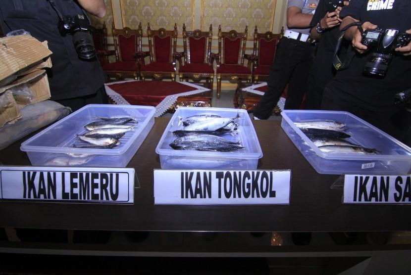 Penggunaan Formalin dalam Pengolahan Ikan, Bolehkah