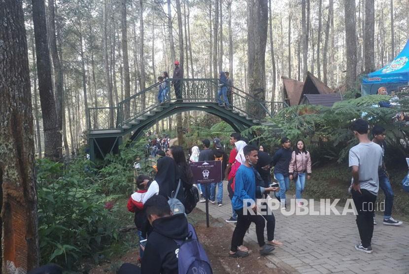 Berkunjung ke Orchid Forest Cikole di Jalan Lembang, Desa Cikole, Kecamatan Lembang, Kabupaten Bandung Barat anda akan diajak menikmati hutan dengan gaya kekinian.