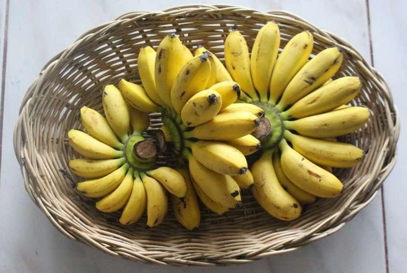 Buah pisang.