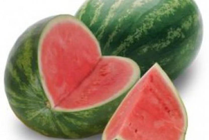 Buah semangka, ilustrasi
