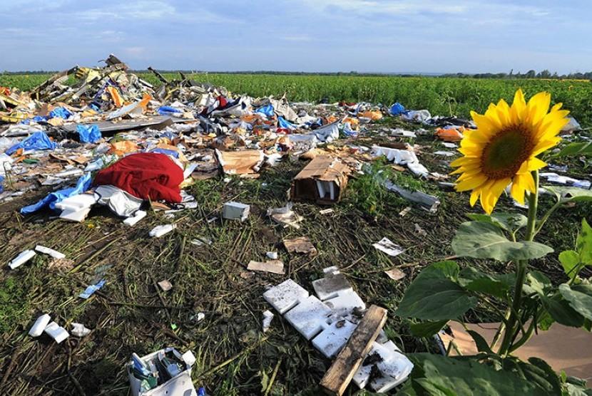 Bunga matahari tumbuh di lokasi jatuhnya mh17