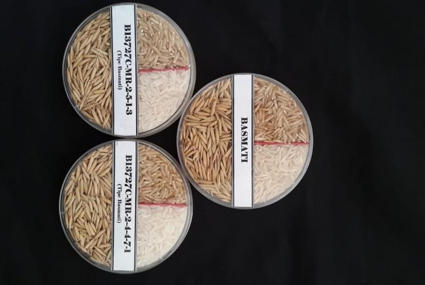 Contoh beras basmati (baroma) yang diproduksi BB Padi Sukamandi.
