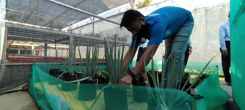 CSR Pertamina RU VI Balongan menggandeng kelompok Wiralodra yang merupakan salah satu mitra binaan RU VI sebagai intsruktur pelatihan untuk warga binaan Lapas Indramayu.