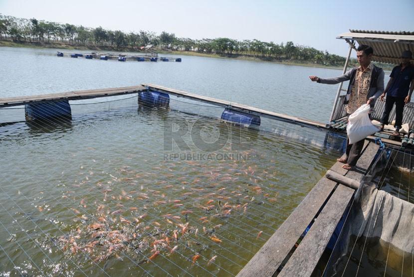 danau bekas galian tambang (ilustrasi)
